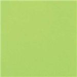 COLOURFUL DAYS COLOURBOARD 200GSM 510 X 640MM LIME GREEN PACK 50